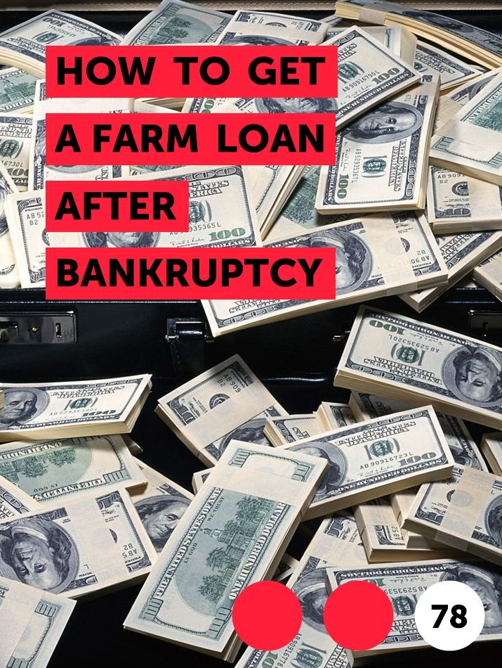 How To Get A Farm Loan After Bankruptcy In 2020 Money Veterinarian Farm Loan