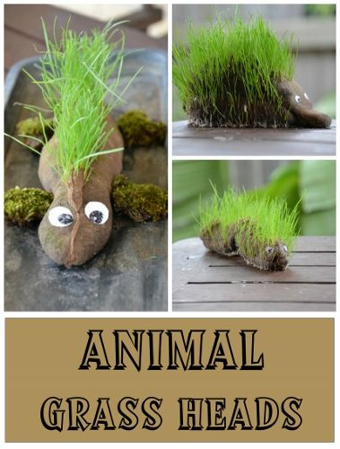 How to make Animal Grass Heads (Dinosaur, echidna, caterpillar)