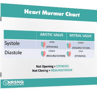 Check Out this Awesome Heart Murmurs Cheatsheet from @NRSNGcom