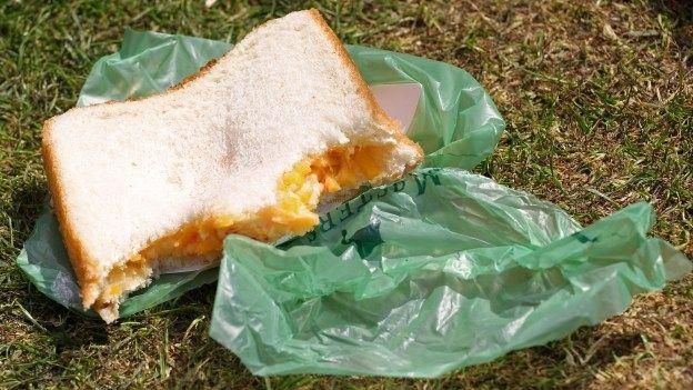Trabajadores de una compañía alemana reciben sándwiches envenenados - Cachicha.com