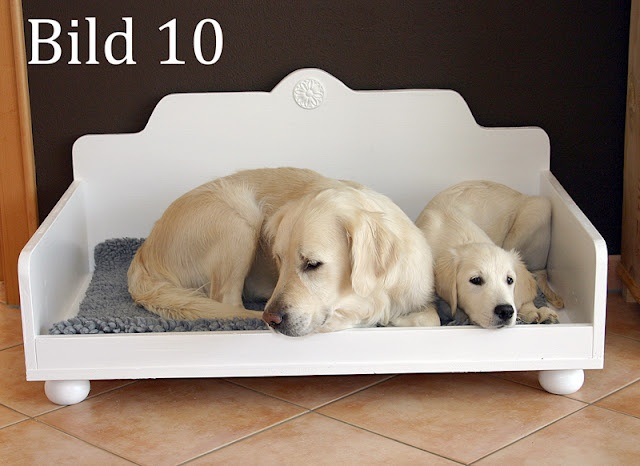 Best Prices On Dog Beds For Multiple Dogs