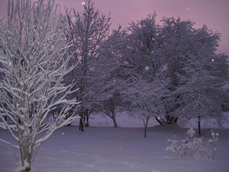 Talvinen ilta, Hämeenkyrö, Suomi.