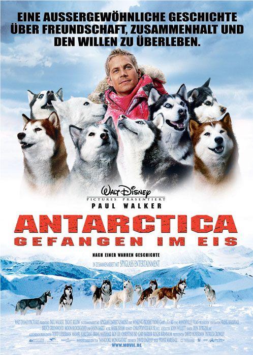 Poster zum Film: Antarctica - Gefangen im Eis