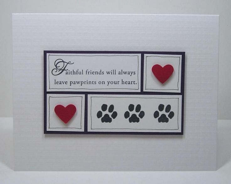 I created this card for Joyce's VSN challenge called [url=www.splitcoaststampers.com/forums/virtual-stamp-night-f54/treasured-furry-friends-ashjoy-vsnmar15c-3-6-15-8-pm-est-t597286.html]Treasured Furry Friends[/url].  My card is to honor my lost dog Kali.  She was big Black Labrador/Great Dane mix and that made her tall and playful.  The one drawback about big dogs is their short lifespan.  We had to say goodbye to her last September and she is missed every day.  She was black and white and…
