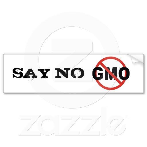 Say no gmo bumper sticker car bumper stickersbusiness