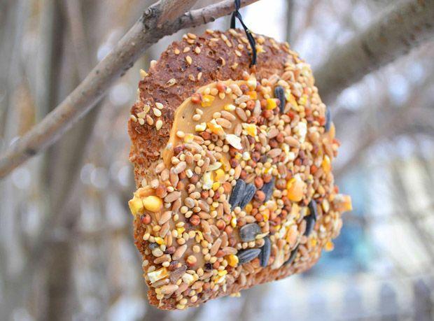 boterham met vogelzaad