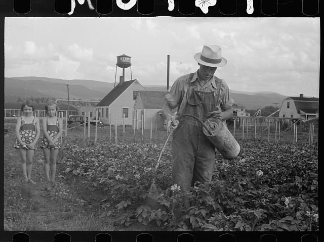 Tygart Valley Homestead - Traveling 219: The Seneca Trail  Spraying crops with children, 1938. From the Library of Congress. Photo by Marion Post Walcott, 1938.