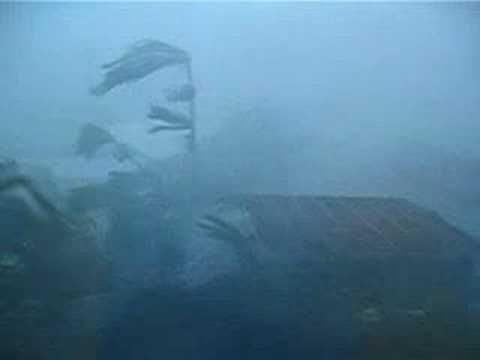 Hurricane Ivan Destruction  cocotier soufflé