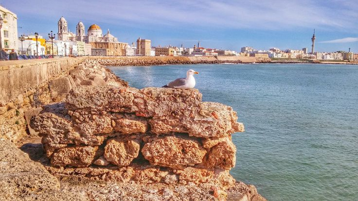 Looking For cheap flights to Cadiz?   About Cadiz:Cádiz is an ancient port city in southwest Spain, built on a strip of land surrounded by the sea in the Andalusia region. The home of the Spanish Navy, the port boomed in the 16th-century as a base for exploration and trade.