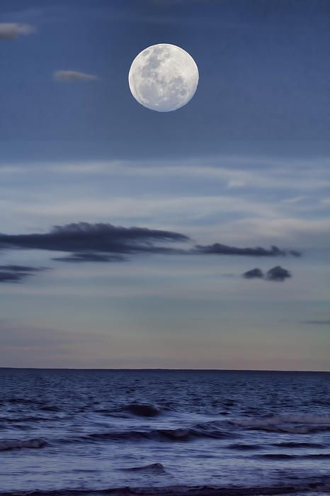 Moon Over The Ocean-Casuarina Coastal Reserve, Darwin, NT, Australia | by Douglas Barnard