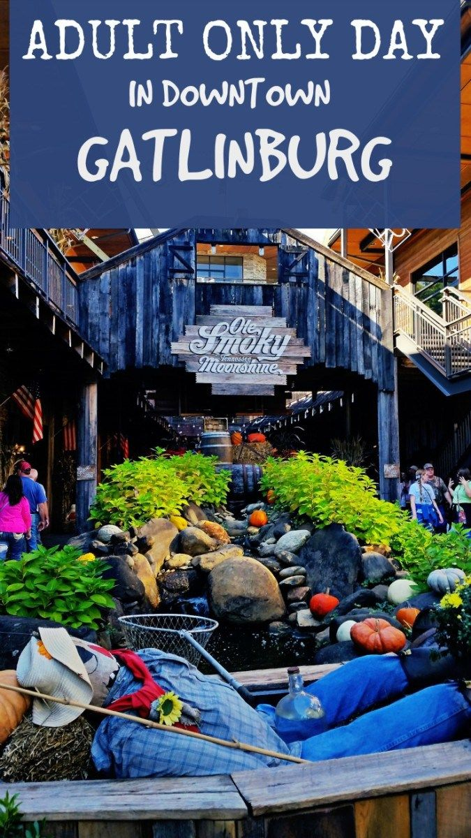 Adult Only Day in Downtown Gatlinburg  Awesome things, We and Awesome