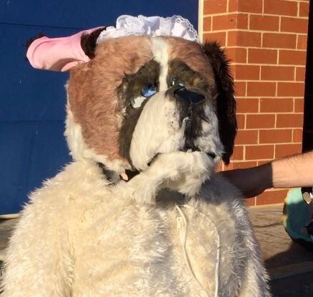 "Picture of ""Nana"" Costume, St. Bernard Dog Costume From Disney Peter Pan"