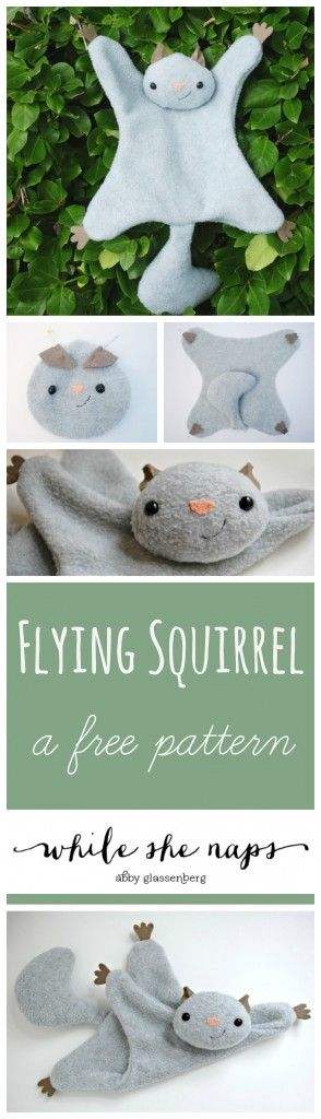 Flying Squirrel Collage