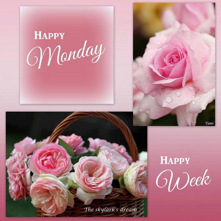 Happy Monday! ❤️/ Very Pretty A! Thank You xx :-)