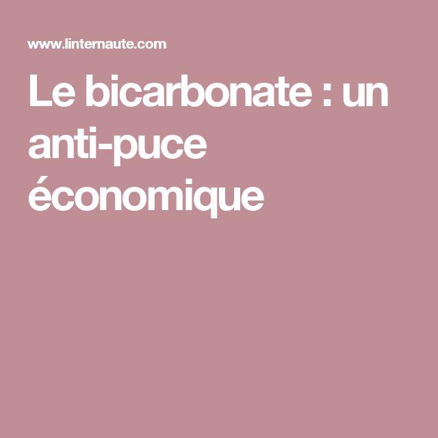 Le bicarbonate: un anti-puce économique