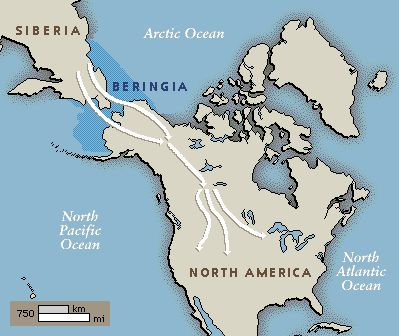 analysis on america s ice age video Genetic analysis unlocks the secrets of europe's ice age inhabitants dna secrets of ice age europe unlocked ancient boy's dna links europe and america.