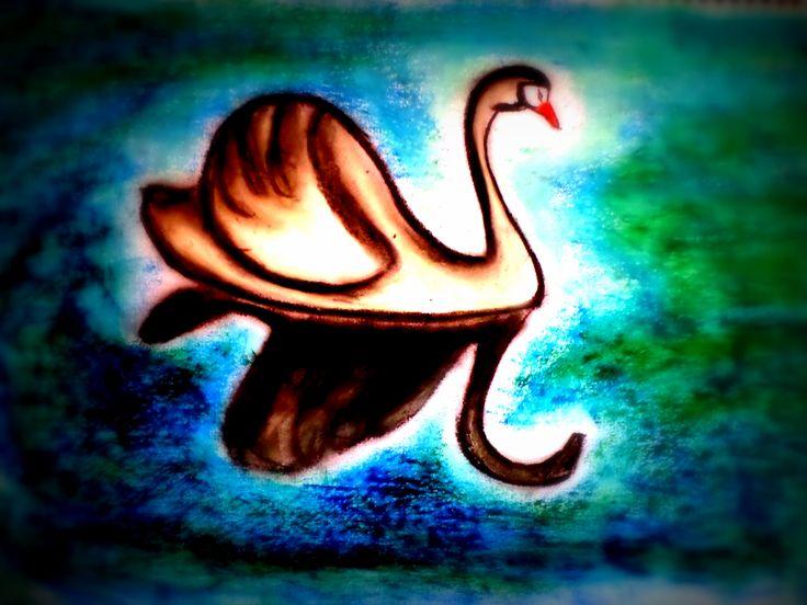 Cisne!