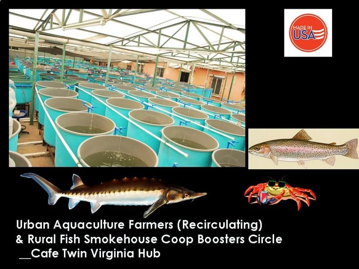 Urban aquaculture is a growing industry worldwide, particularly in Europe such as Germany, Russia, and other Caspian region nations with proven contribution to economic well being and quality of life on a family or community or regional levels.