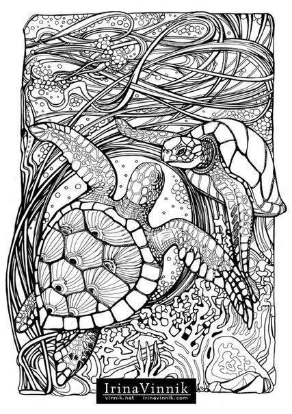Manic Botanic Zifflins Tension Taming Coloring Book Invites You To Get In Davlin Publishing