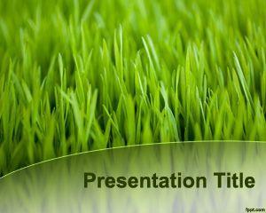 green grass template powerpoint mowing