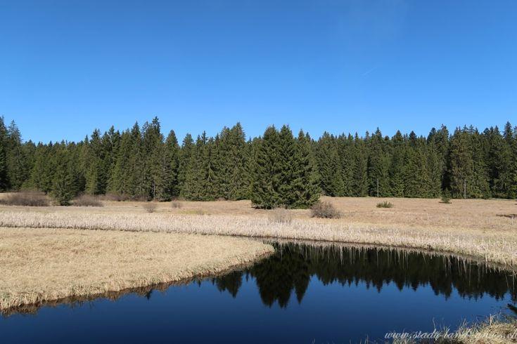 Moorgebiet Etang de la Gruyère in den Freibergen im Jura. Ideal für Wanderungen und Ausflüge.