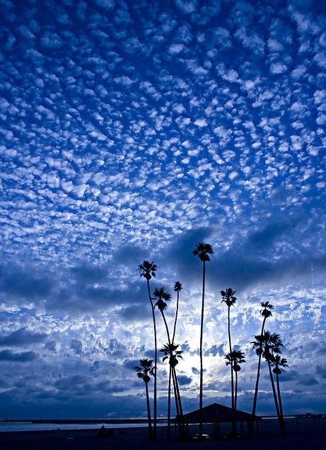 2nd skies forex facebook