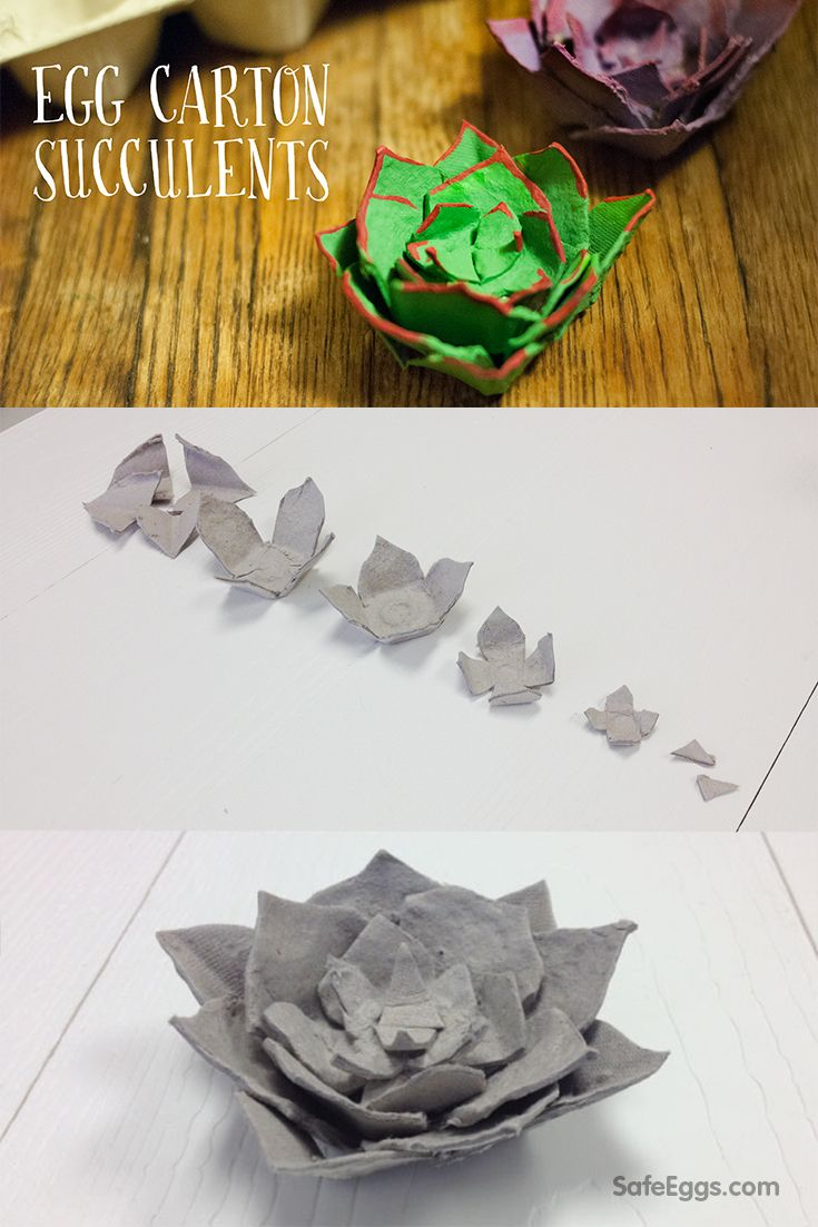 848 best ideas about kids recycle crafts on pinterest for How to recycle egg cartons