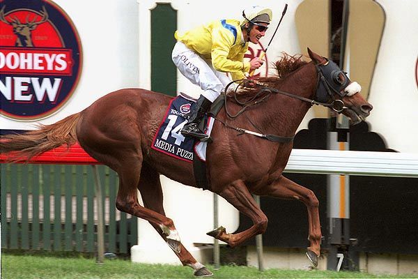 2002 Media Puzzle, jockey Damien Oliver - Melbourne Cup winner - Google Search