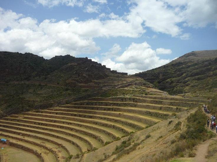 terrazas de pisac Peru