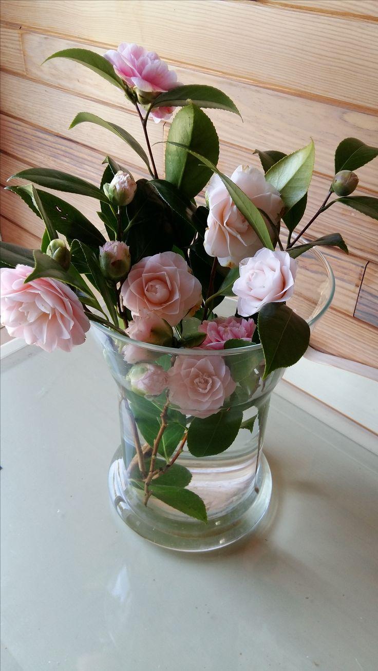 Aline ♥ #flowers
