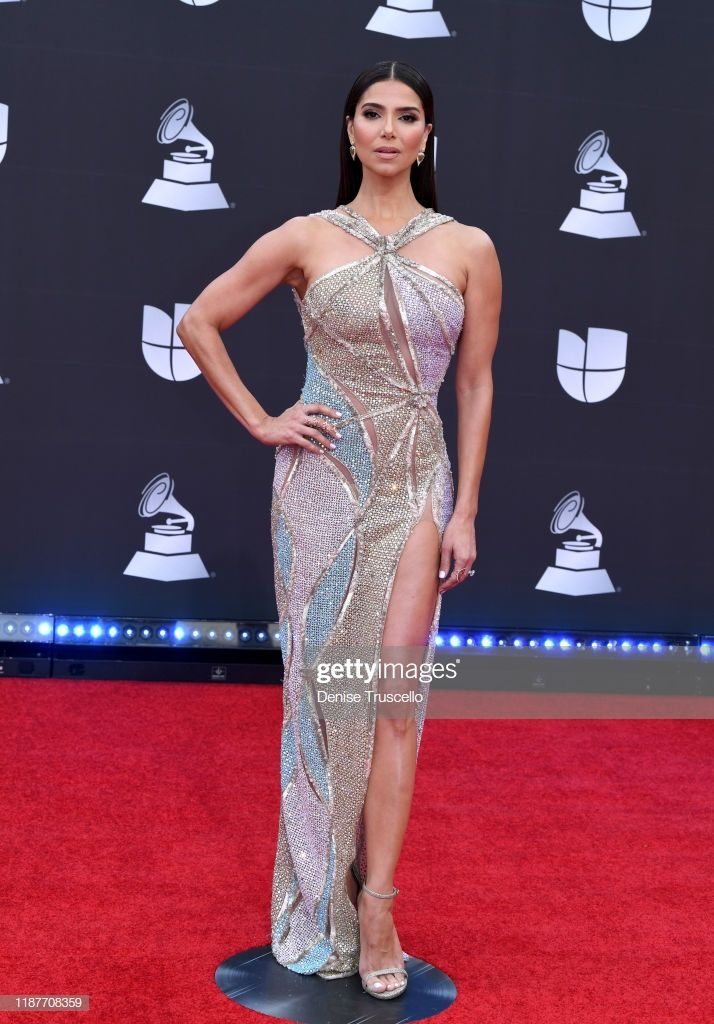 Roselyn Sanchez Attends The 20th Annual Latin Grammy Awards At Mgm Perfect Dress Gorgeous Dresses Grammy Awards