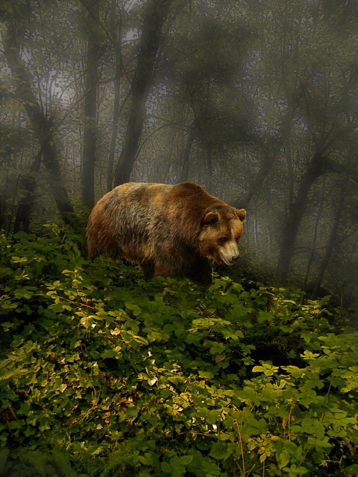 Photograph 3055 by peter holme iii on 500px