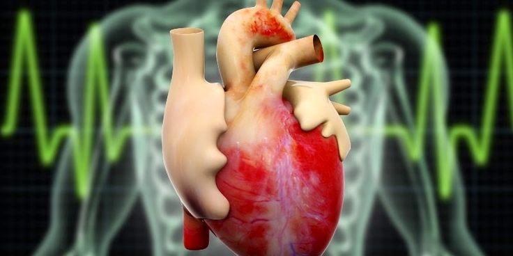 Bagi penderita penyakit jantung bengkak obat jantung bengkak terbaik pastilah menjadi incarannya, nah kami memiliki produk ramuan herbal yang sangat aman dan tidak menimbulkan efek samping ketika di konsumsi yaitu Ace Maxs yang mana sangat tepat sekali bagi anda penderita penyakit jantung bengkak ramuan herbal Ace Maxs ini anda konsumsi secara rutin dan di jadikan sebagai Pengobatan Tradisional Jantung…