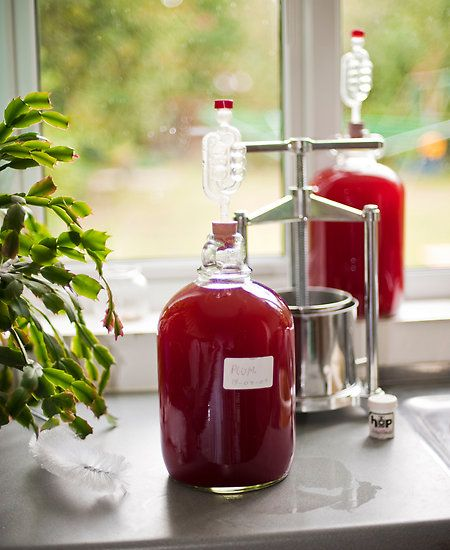 plum wine to make when we are overrun with with plums this summer