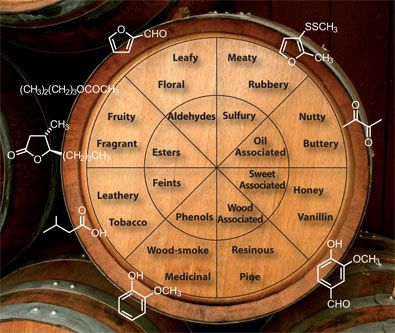 The famous tasting wheel. The chemical foundation for smell. Or so they say.
