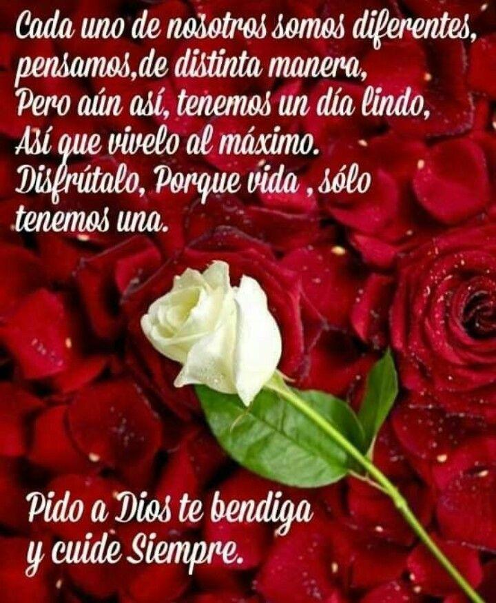Pin De Araceli Nunez En Dios Es Amor Buenas Noches Cristiana