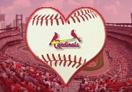 St. Louis Cardinals 2011 World Series Champs!