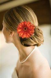 golden orange gerbera hairpiece
