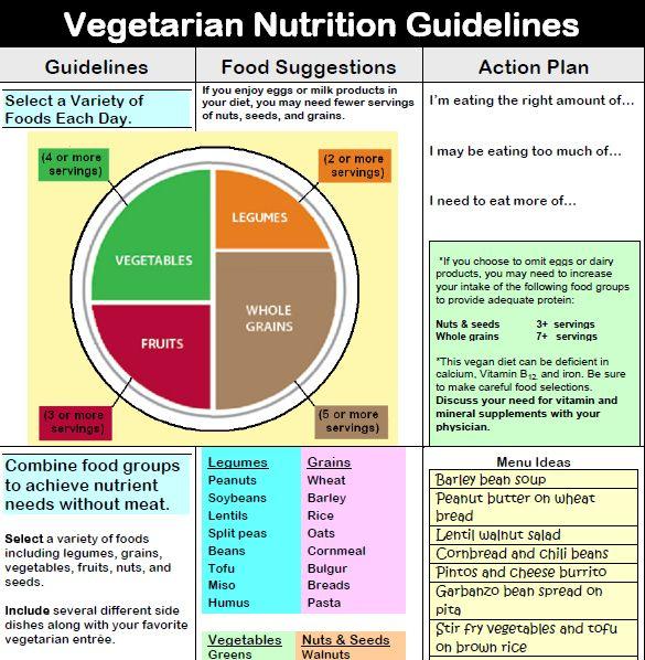 Vegan Avocado Recipes Easy