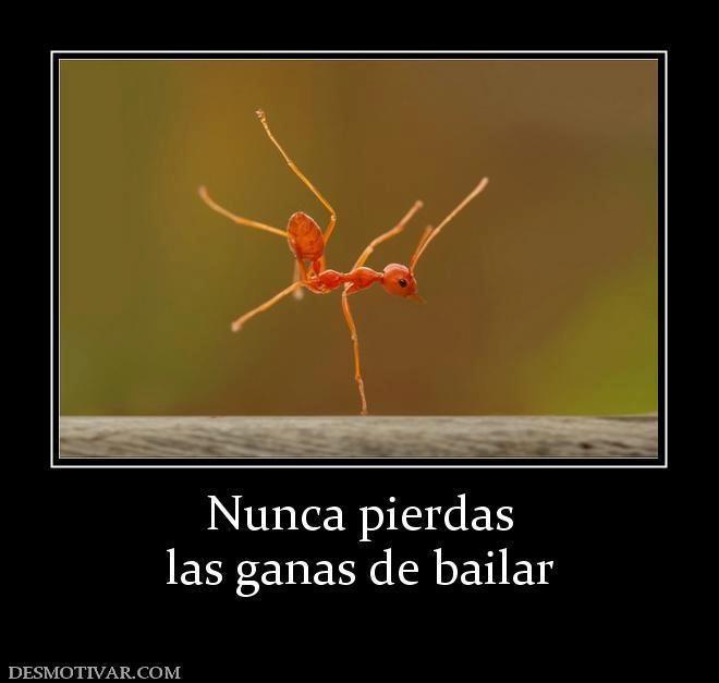 Baile...para todos!!!