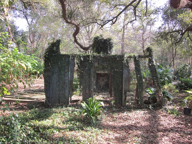 17 Best images about FORGOTTEN IN LOUISIANA on Pinterest ...