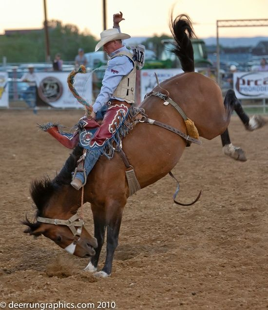 63 best images about Rodeo on Pinterest | The horse, Rodeo ...