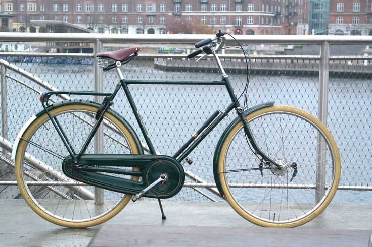10 year old Raleigh tourist de luxe 05'