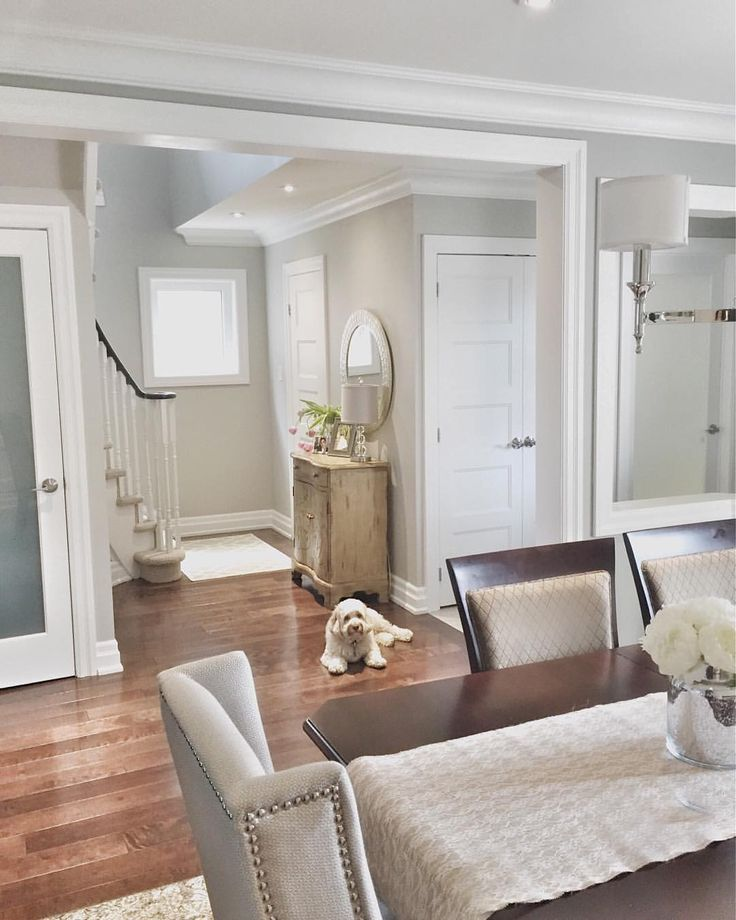 25 Best Ideas About Benjamin Moore Storm On Pinterest: Best 25+ Benjamin Moore Thunder Ideas On Pinterest