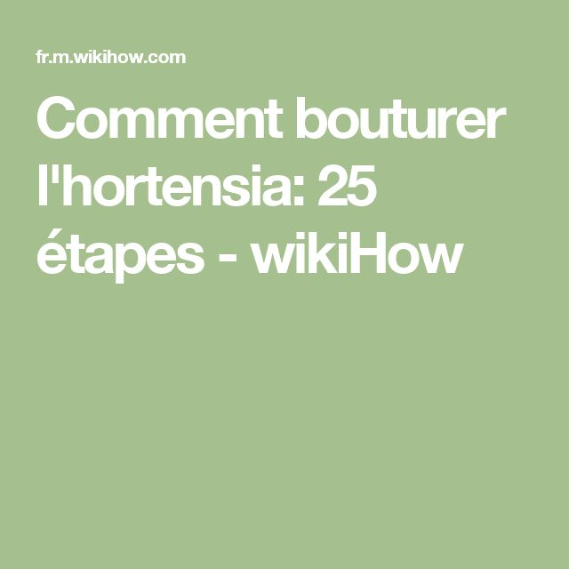 Comment bouturer l'hortensia: 25 étapes - wikiHow