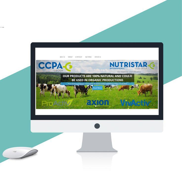 Website designed and developed- #Website