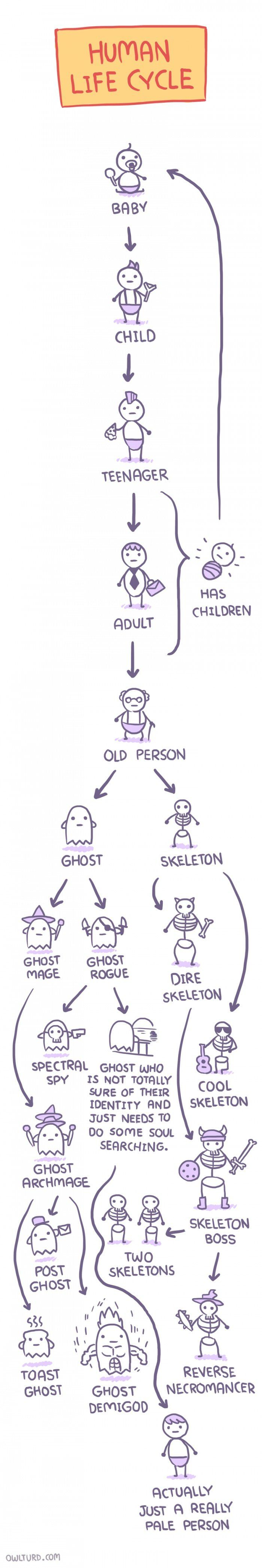 Human Life Cycle Comic http://geekxgirls.com/article.php?ID=9227
