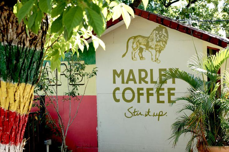 How Bob Marley's Son Learned From Failure And Started A Multi-Million Dollar Coffee Company. Marley Coffee is still a relatively small company, having churned out $6 million in revenue in 2013. But founder Rohan Marley, one of Bob Marley's children, has big plans for his Jamaican-born coffee business. | Co.Exist | ideas + impact