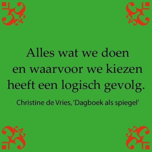 Citaat uit: 'Dagboek als spiegel, een handboek vol inspiratie' van Christine de Vries