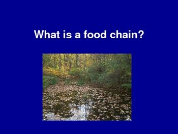 This is quick and simple! 17 slides introduce students to the food chains, or the flow of energy through an ecosystem. Students will learn the word...